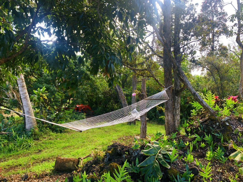 hammock in the gardens